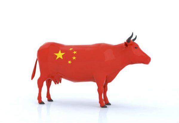 Exposição Internacional de Importações da China