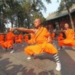 Desvendando o Kung Fu